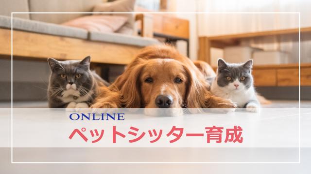 オンライン ペットシッター育成